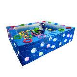 Best Sale Fishing Pool Amusement Park Equipment for Children (ZJ-WC-06)