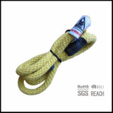 Organic Cotton Rope Slip Training Dog Leads with Woven Label