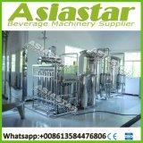 Mini Capacity Hydranautics Membrane Mineral Water Treatment Plant