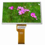 Clear Resolution LCD Transflective Graphics LCD Display Module