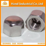 Hot Ss304 Hex Cap Nut (DIN917)