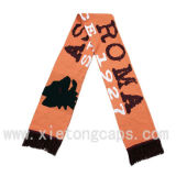 Fashion Scarf, Winter Scarf, Jacquard Football Scarf (JRI037)