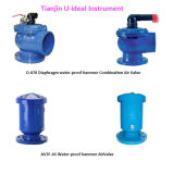 Multi-Functional Combination Air Vent Valve