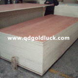 1220*2440mm Bintangor Faced Commercial Plywood