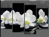 Wholesale Cheap Large Size Beautiful Wall Art White Orchids Canvas Prints