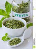 100% Natural Pure Stevia Extract Ra98% Powder