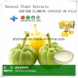 OEM/ODM 100% Natural Plant Garcinia Cambogia Extracts Hydroxycitric Acid 60% Weight Loss Capsules &Pills