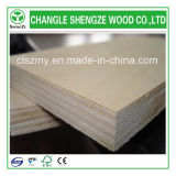Whole Sale 2.1-21mm Bleached Poplar Plywood
