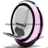 Solowheel Scooter (Ninebot one)