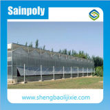Best Cooling System for Agriculture Greenhouse