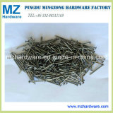 Good Quality Common Wire Nail/Common Nail