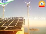 Wind Solar Hybrid System/Wind Generator and Solar Panel Hybrid System