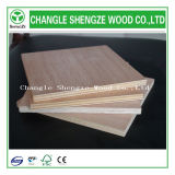 Made in China Shengze Wood Best Quality Plywood