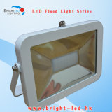 CE RoHS 30W LED Outdoor Flood Light