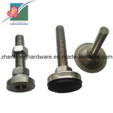Construction Bolts Stainless Steel Foundation Screws (ZH-FB-047)