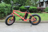 American Style Electric Fat Tire Bicycle 20in Wheel Size 48V 500W