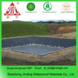 HDPE Sheet Geoliner 0.5mm for Shrimp Farm
