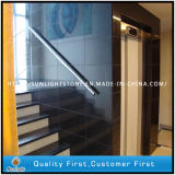 Absolute Polished China Black Granites for Wall/Floor Stair Tiles (SXB-01)