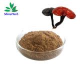 Organic Ganoderma Lucidum Extract Reishi Mushroom Extract Powder