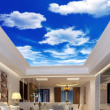 Blue Sky White Clouds Printed PVC Ceilings Soft Film