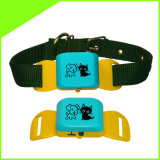 Cctr623 Real Time Waterproof Cats Pet Dog Collar GPS Tracker Lifetime Free Platform Service Charge