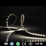 Dandrail Lighting, Foot Light for Stairs, and Under Bench Lighting with Hot Selling SMD2835 14.4W 60LEDs/M LED Strips