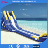 UV Proof Beach Giant Crazy Inflatable Water Slide for Sale