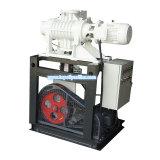 High Quality Vacuum Pump Set (ZKCC)