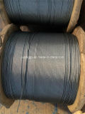 Steel Wire Rope, Galvanized Steel Wire Rope /Hot-Dipped Galvanized Steel Wire Rope 7*7