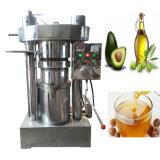 Pine Nut Moringa Sesame Peanut Avocado Small Oil Press Machine
