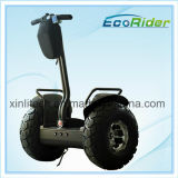 Power Electric Motor Mobility Cars