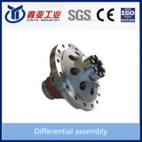 Iron Casting Differential Assembly for FAW/JAC/Sinotruk/Howoheavy Duty Truck