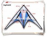 Dual Lines Stunt Kite