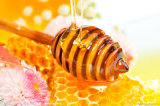 100% Pure Natural Honey Extract
