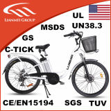 Urban Electric City Bicycle Ce Certificated