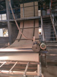 Hollw Core Chipboard/Hollow Core Particleboard