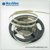 Hot Selling LED Strip with 3528 SMD LED Strip