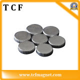 Rare Earth Magnet/Neodymium Magnet for Industry with SGS