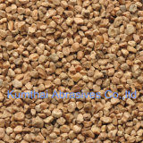 High Quality Abrasive Walnut Shell (WS)