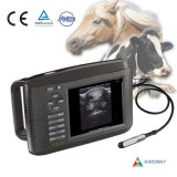 Veterinary Ultrasound Scanner with CE (RW-802V)