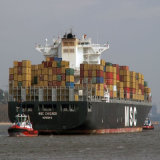 Super Ocean Shipping Logistics Service to Capetown From Shenzhen by 40HQ Container and by MSC