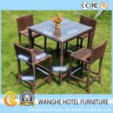 Rattan Hotel Outdoor Furniture with Glass for Home Furniture