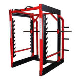 Lifefitness Fitness Equipment, 3D Smith Machine (SF1-3055)