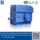 NHL High Torque Electric AC Motor