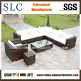 Outdoor Sofa / Rattan Sofa (SC-B6018)