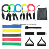 16PCS Resistance Bands Set with Exercise Bands, Loop Bands, Door Anchor, Ankle Strap Foam Handles Resistance Training Physical Therapy Home Gyms Workouts