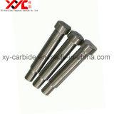 Cobalt Binder Tungsten Carbide Punch, Carbide Punching Die