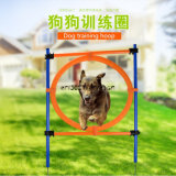 Pet Health Training Jump Hoops