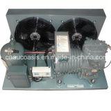 Dlle-301-Ewl 3HP Dwm Copeland Compressor