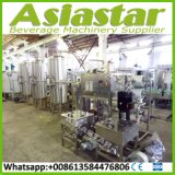 Commerical Industrial Drinking Pure Water Small Capacity Treatment Price